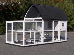Chicken coop Kathedraal XL with run and foundations 291x174x181cm