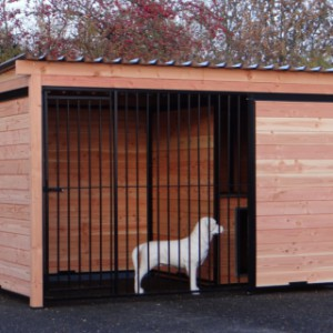 Dogkennel Forz black with insulated doghouse of Douglas wood