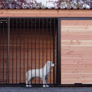 Kennel Dog 3x2 meter