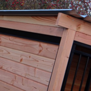 Kennel with roof
