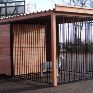 Kennel with 3 meshpanels