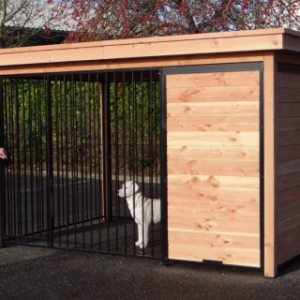 Dog kennel with covered part in which you can place a platform or doghouse