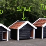 Reno, Snuf and Turbo, small to large