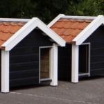 Dog house of high pressure treated wood Reno