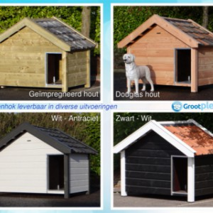 Doghouse Reno in different colours