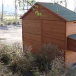 Chicken coop with laying nest