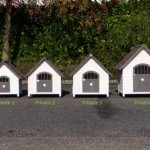 Doghouse Private | All available sizes together