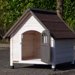 An open door for your dog