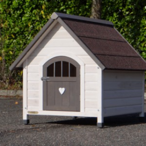 Doghouse Private 3 in the sun