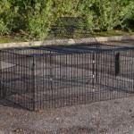 Rabbit enclosure outdoor Maik