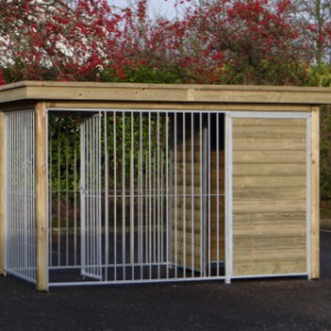 Beautiful kennel for dogs