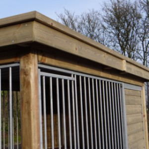 Dog kennel with beautiful roof