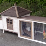 Chicken coop AMBIANCE SMALL
