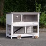 Double floor rabbit hutch Adrian