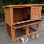 Rabbit hutch small