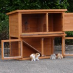 Cheap rabbit house Basic