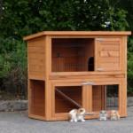 Cheap rabbit hutch Basic