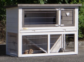 Rabbit hutch with protection