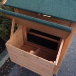 Chicken coop for your backyard