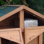 Loft chicken coop