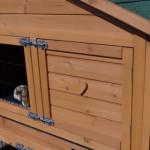 Rabbit hutch with double locks