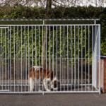 Large dog kennel for Saint Bernard dog