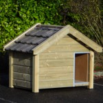 Doghouse of wood Reno, Dutch looks!