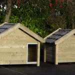 House for dogs of good quality
