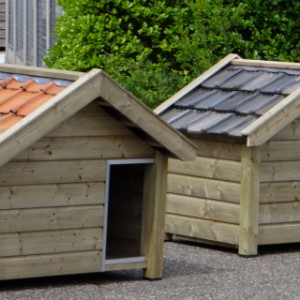 Reno doghouse of high pressure treated wood