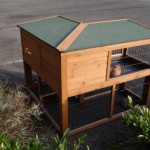 Backside rabbit hutch Maurice