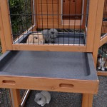 Plastic drawer rabbit hutch
