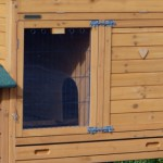 Rabbit hutch with large sleeping compartment