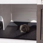 Sleeping compartment rabbit hutch Excellent Medium