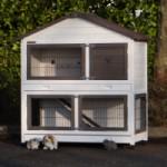 Rabbit house Excellent Medium White