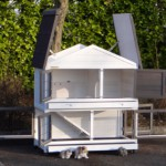 Rabbit house with hinged roof