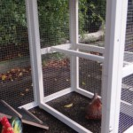 Perche of chicken coop