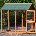 Attached rabbit run for Holiday Medium