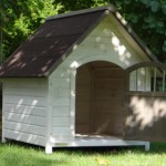 Doghouse with door
