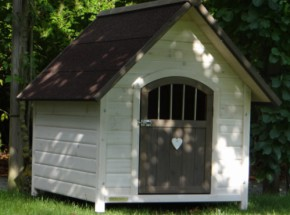 Doghouse Private 1 white grey