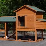 Chicken run with chicken house