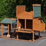 Chicken coop for your garden