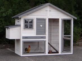 Chicken coop, chicken run Holiday Medium white-grey