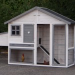 Chicken run with sleeping compartment and nestbox