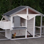 Chicken run with storage and laying nest